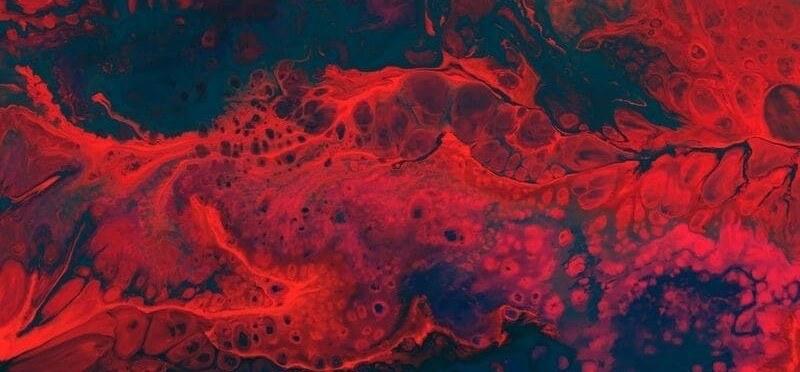 Soja Blutfettwerte Blut