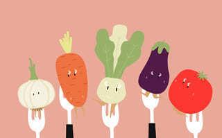 vegan ungesund quatsch