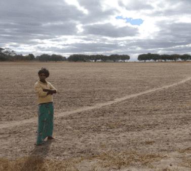 Landgrabbing vertreibt
