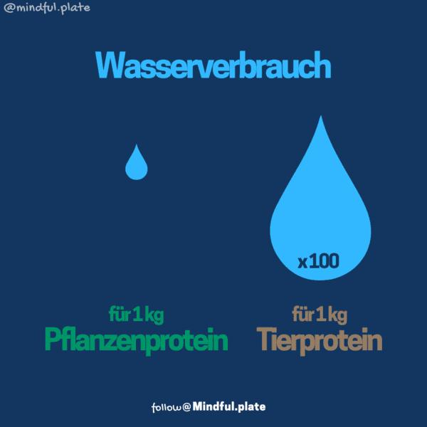 Tierisches Protein Wasserverbrauch