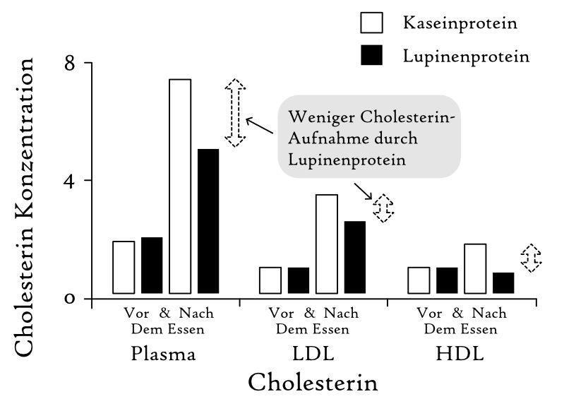 tierisches protein herz-kreislauf